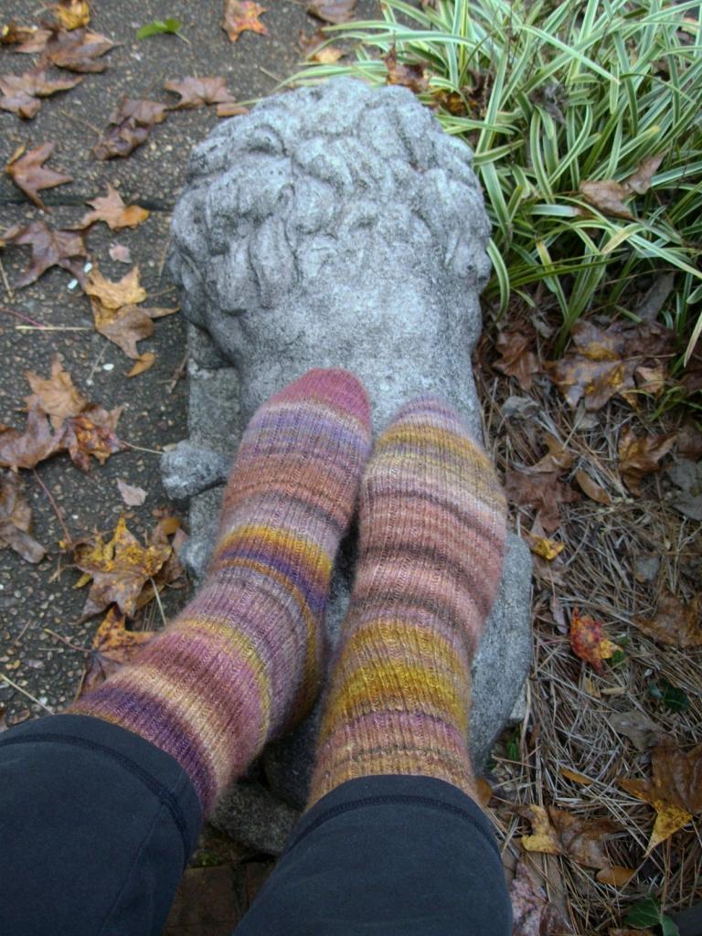 Pigeonroof socks