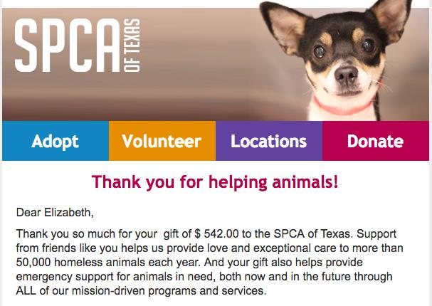 EEKnits fundraiser SPCA donation