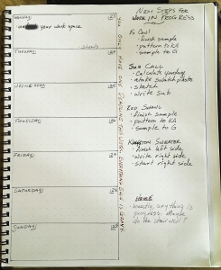 """A planner outline for this week. Along the side of the day grid are the words, """"You only have one deadline this week. Everything else is gravy."""""""